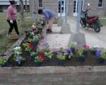 Flores en el SUM (1)